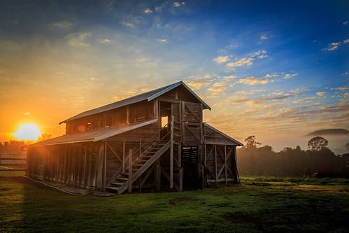 Sunrise Shed