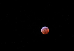 Super Blood Wolf Moon Eclipse of 2019