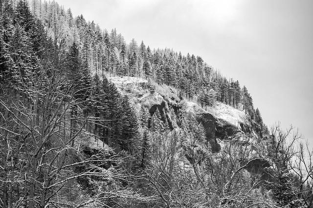 A bleak winter's day