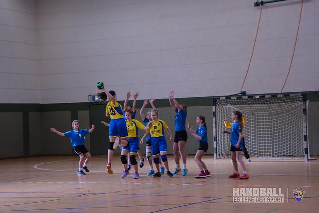 20190223 Laager SV 03 Handball wJD - SV Pädagogik Rostock (11).jpg