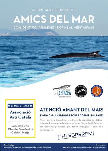 Conferència dofins