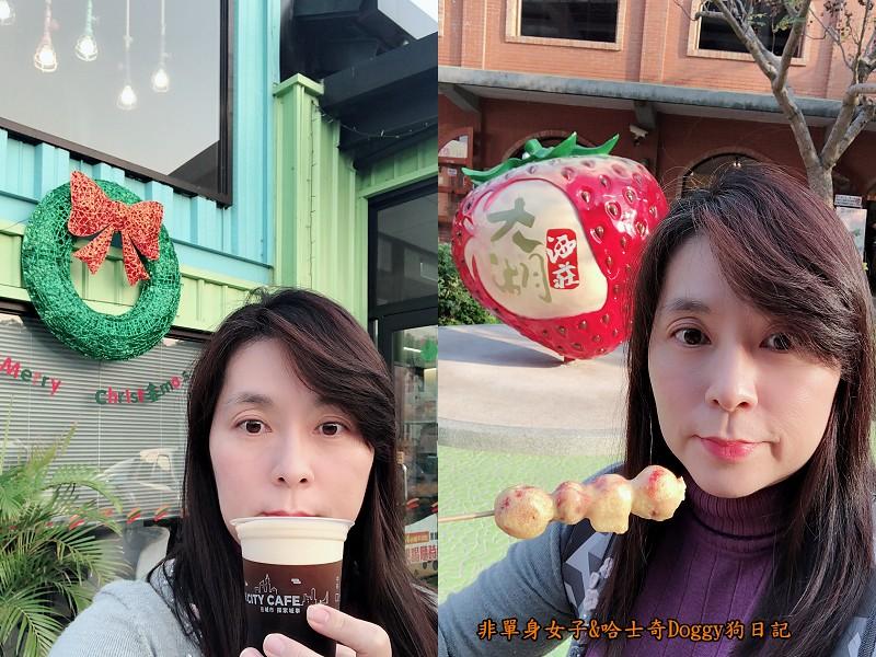 苗栗大湖草莓01