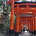 Climbing the Inariyamakanyuchi by rob.brink