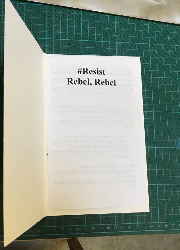 IMG_0015#ResistRebelRebel