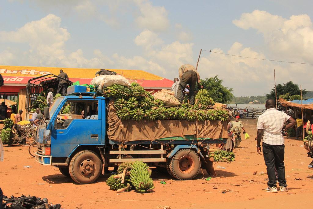 Banana sellers, Nakiwogo Market, Entebbe