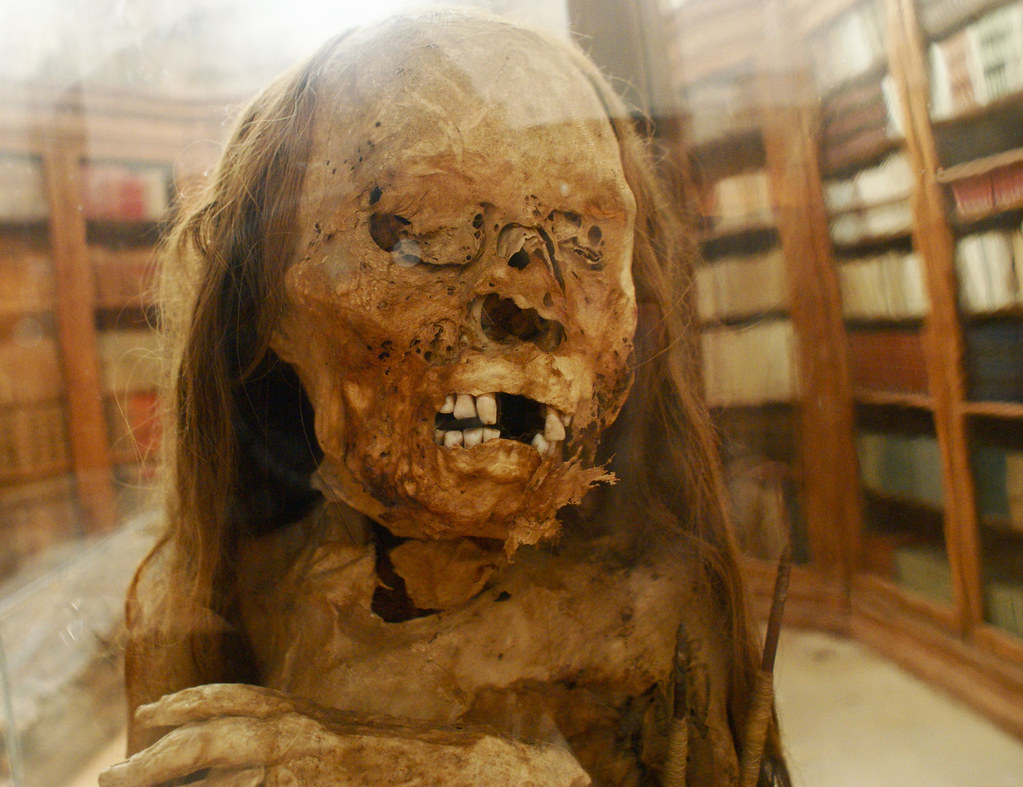 Momie insolite et terrifiante du musée des Carmes à Lisbonne.