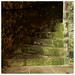 <p><a href=&quot;http://www.flickr.com/people/wwshack/&quot;>wwshack</a> posted a photo:</p>&#xA;&#xA;<p><a href=&quot;http://www.flickr.com/photos/wwshack/47132463871/&quot; title=&quot;Green stair carpet , Aberdour Castle&quot;><img src=&quot;http://farm8.staticflickr.com/7872/47132463871_f19a950216_m.jpg&quot; width=&quot;240&quot; height=&quot;240&quot; alt=&quot;Green stair carpet , Aberdour Castle&quot; /></a></p>&#xA;&#xA;