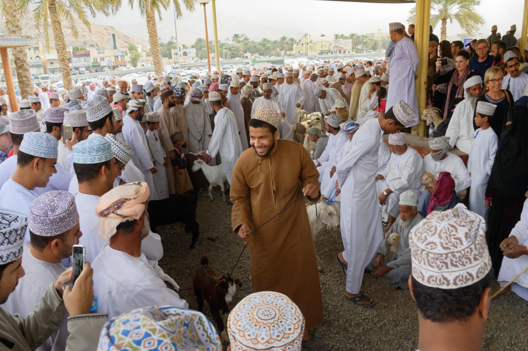 Nizwa Cattle Market Scene, Oman
