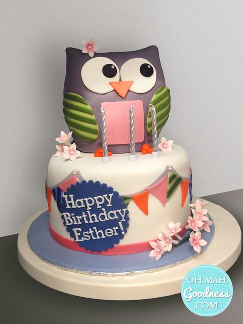 Owl Cake by Oh Mah Goodness Cakes