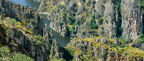 Arribanzos del Río Duero en Fariza