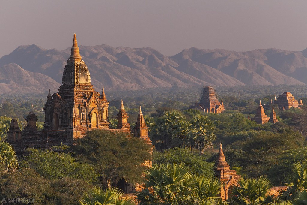 Temples in the evening light - Bagan
