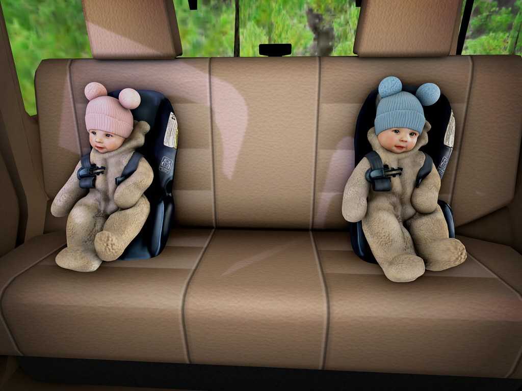 .Car Rides.