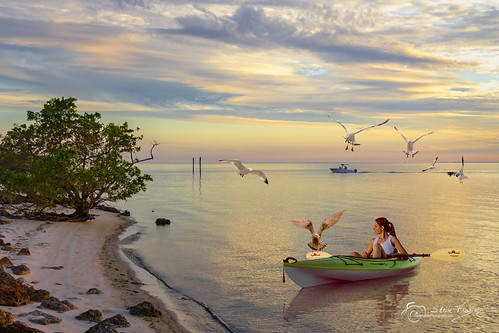kayak kayaker boat watercraft doublebladed paddle cockpit deck girl woman lady poncedeleon historical park water waves ripples shore shoreline mangroves charlotte harbor bay charlottecounty florida fl seagulls stevefrazierphotography photographer composite photomanipulation digitalmanipulation