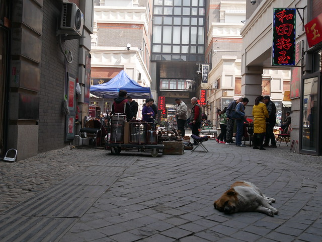 In the streets of Tianjin, China
