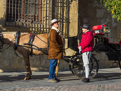 Spain - Cordoba - Coachmen