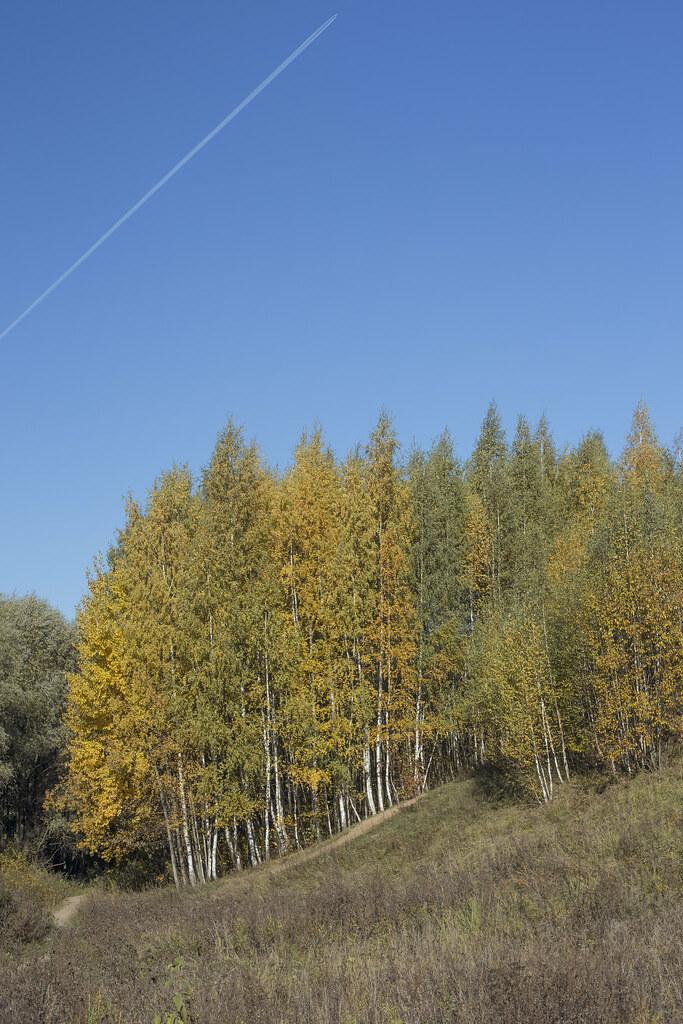 Осень_Крылатское_6