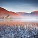 Good morning Scotland by Andrew Thomas 73
