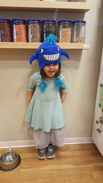 Fairy Whale