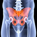 male pelvis under the X-rays. pelvis is highlighted in red., foto: Depositphotos