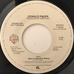 DONALD FAGEN:I.G.Y.(WHAT A BEATIFUL WORLD)(LABEL SIDE-B)