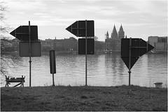 Spaziergänge am Rhein