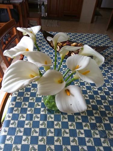 decoração de jarros na casa da Ponta Gorda