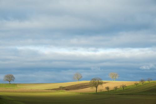 Horizon Alsacien