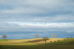 Horizon Alsacien - Photo of Hatten