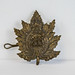 2017-26-001-1 WW1 Cap badge of the 255th Battalion