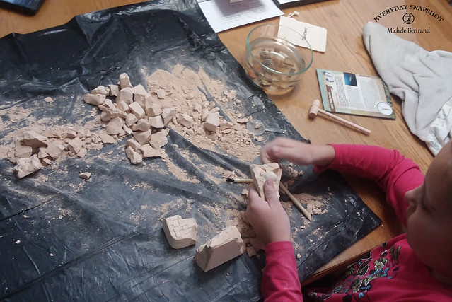 Fossil Dig (2)