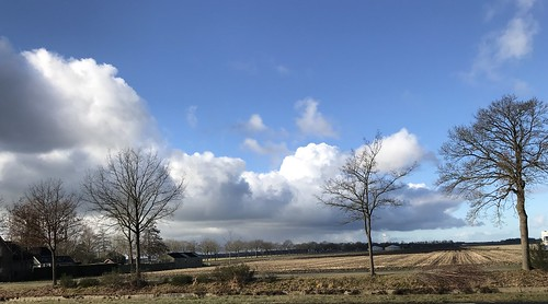 Bovensmilde uitzicht op Drents-Friese Woud - Foto: John Bouma