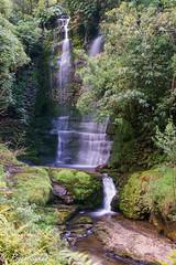 Waitanguru falls NZ