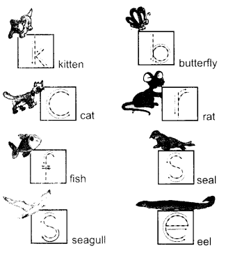 NCERT Solutions for Class 1 English Chapter 5 One Little Kitten 2