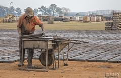 Haciendo ladrillos con barro. / Fabrication de briques avec de la boue