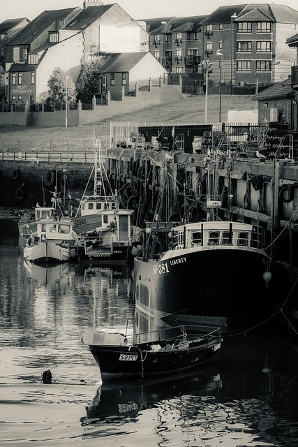 The fish quay, Fujifilm X-T2, XF90mmF2 R LM WR