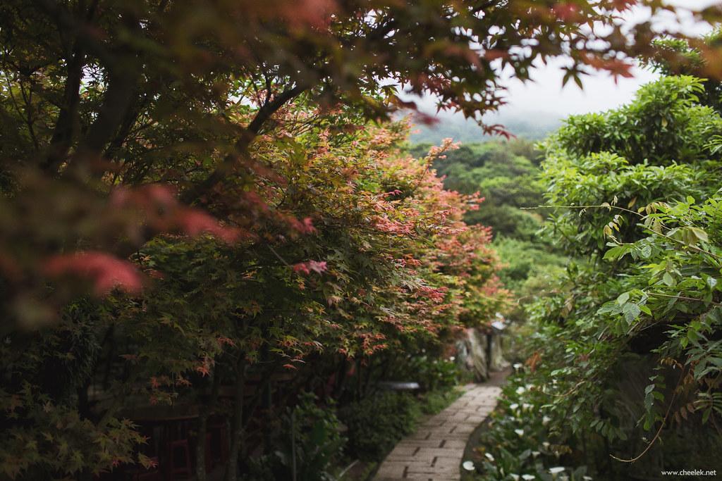 Taiwan_Flickr-036