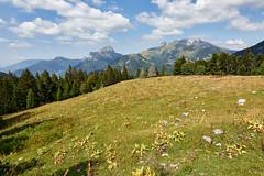 Mont Trélod (2181 m) et pointe d'Arcalod (2217 m)