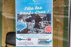 00-Bazas fête les bœufs gras!! - Photo of Bernos-Beaulac