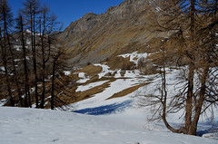 Environs du col de la Gardette - Photo of Réallon