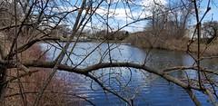 Silver Lake Park - April 10th 2019 (7)