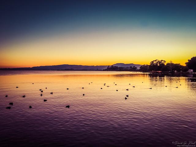 Sunrise on Rotorua