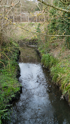 Confluence: Graiseley Brook / Smestow Brook