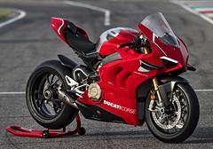Ducati 1000 Panigale V4 R 2019 - 31