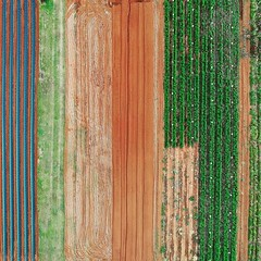 Like an aerial #abstract #pattern , this outer #brisbane suburb farmer's field had some interesting colors and contrast that caught my eye. Hope you like it :smile: #naturephoto #main_vision #landscape_captures #awesome_earthpix #natureaddict #rsa_rural #