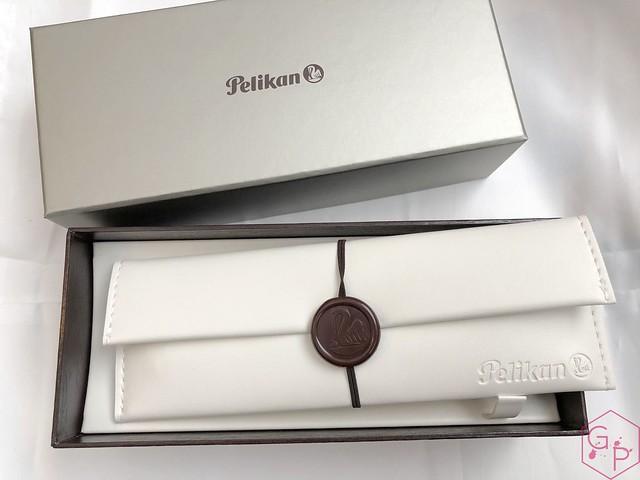 Pelikan Souverän M1005 Stresemann Fountain Pen Review 6_RWM