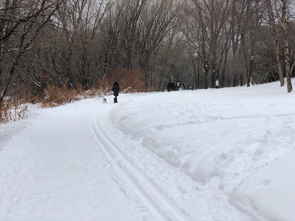 Канада, Квебек, Квебек-Сити - жизнерадостный рождественский Квебек