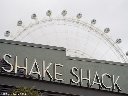 Icon over Shake Shack