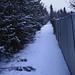Path Less Taken 7D2_3289