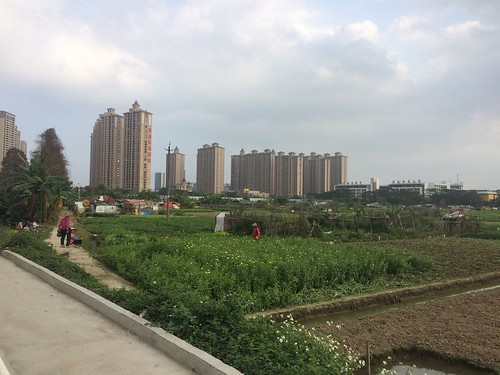 foshan apartments rural farming urban views river