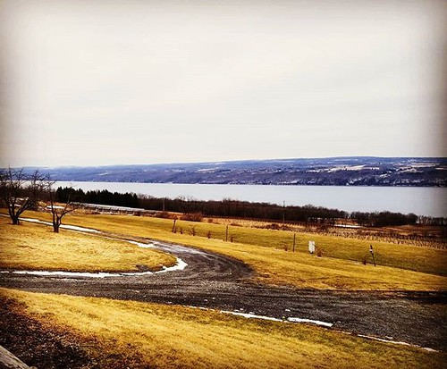 Seneca Lake, looking south from the eastern shore #senecalake #fingerlakes